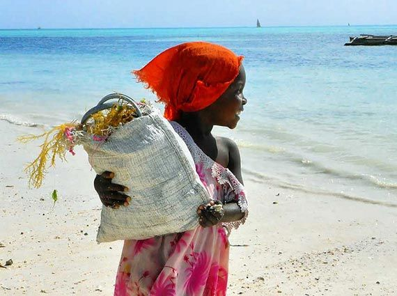 Seaweed Collector, Zanzibar. Foto: Rod Waddington/flickr