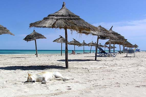 In front of Calimera Yati Beach Hotel, Djerba. Foto: sk#walker/flickr